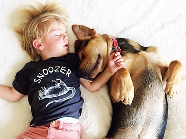 9 animal-toddler friendships you need to follow on Instagram